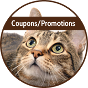 btn-coupons-promo.png